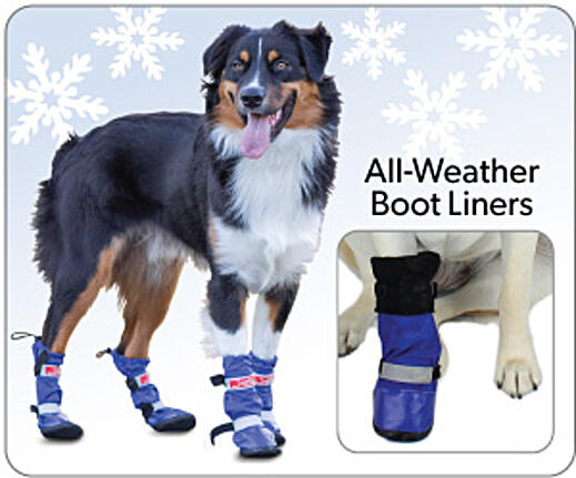 All-Weather-Boots-and-Liners-1