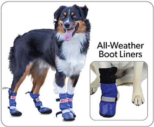 All-Weather-Boots-and-Liners-2