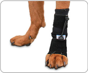 Front No-Knuckling Training Sock