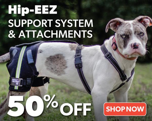 HipEEZ-50%-Off