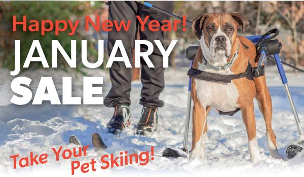 January-Sale-1