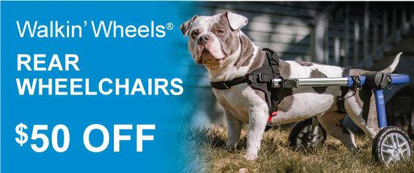 Rear-Wheelchair-Sale