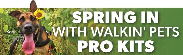 SpringSpecials2-1